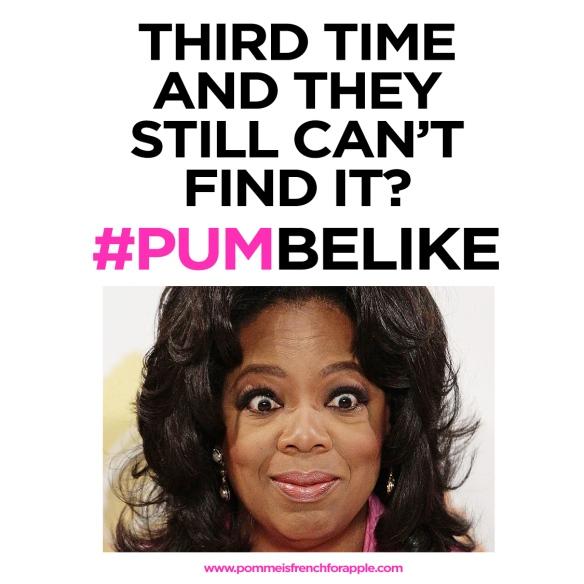 pum be like 1